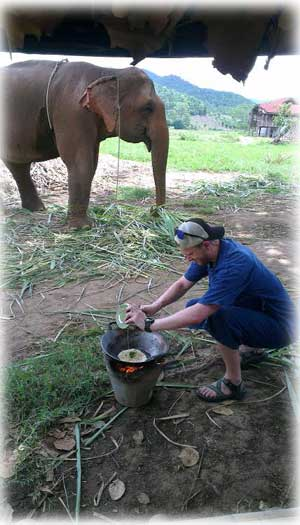 Learn how to cook authentic northern Thai Food at lunch during any of our trekking tours